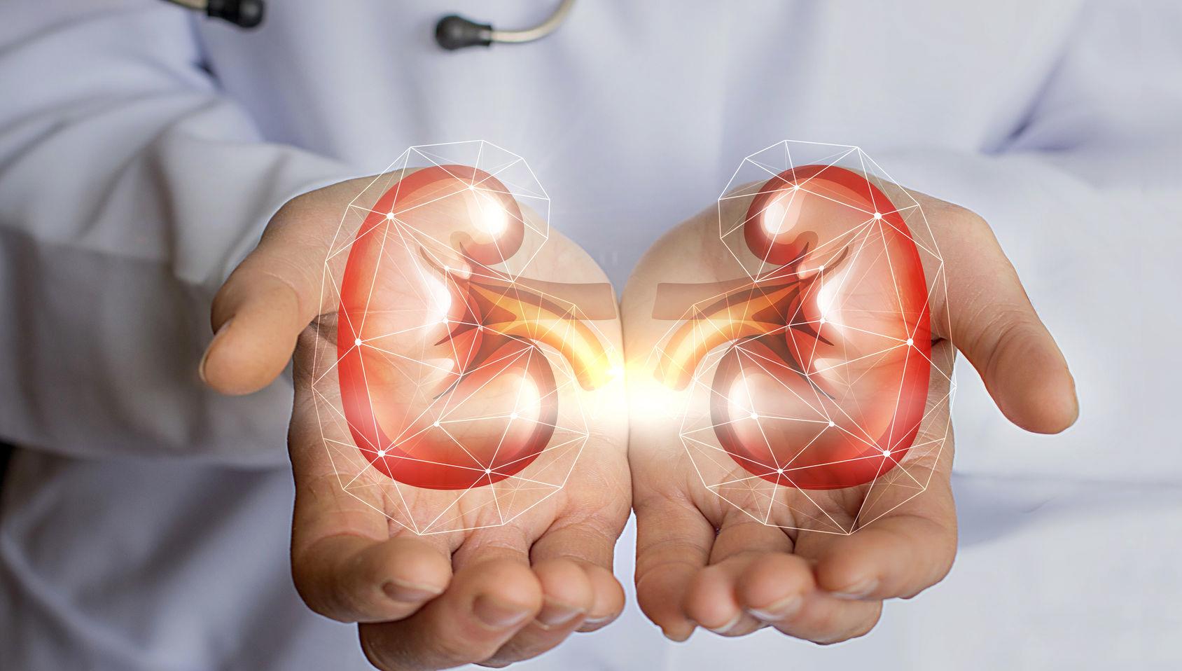 urologo-roma-urologia-a-roma-visita-urologica-i-salus